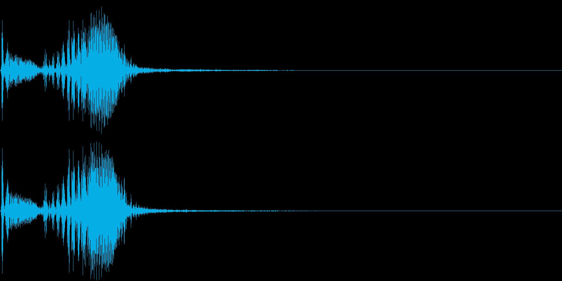 【生録音】フラミンゴの鳴き声 9の再生済みの波形