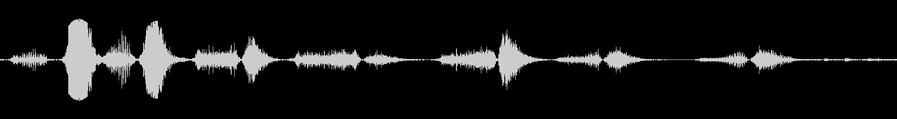 タイガーブレスロア攻撃いびきの未再生の波形