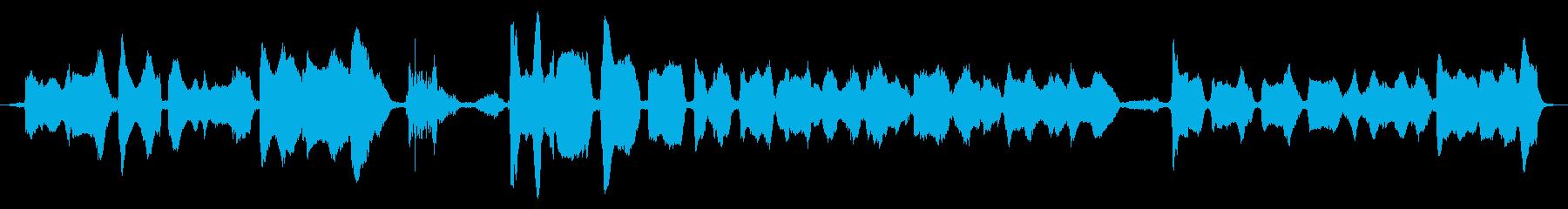 インドの男性:Chan唱、クローズアップの再生済みの波形