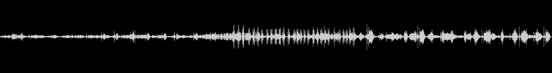 自然 トロピカルリバーライブリーカ...の未再生の波形