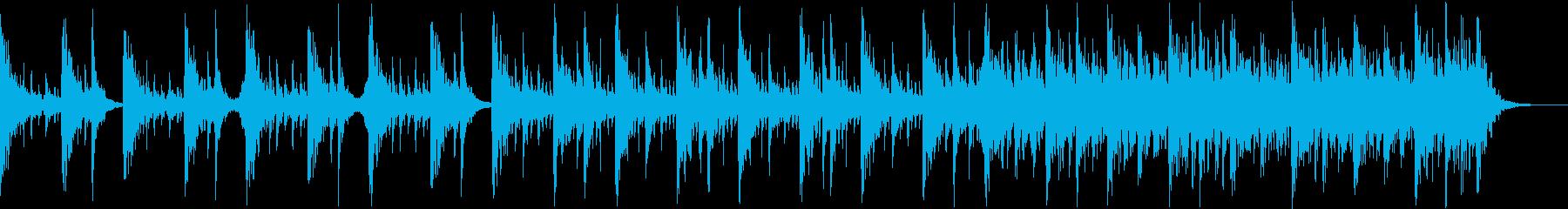 ワールド 民族 神経質 ワイルド 打楽器の再生済みの波形
