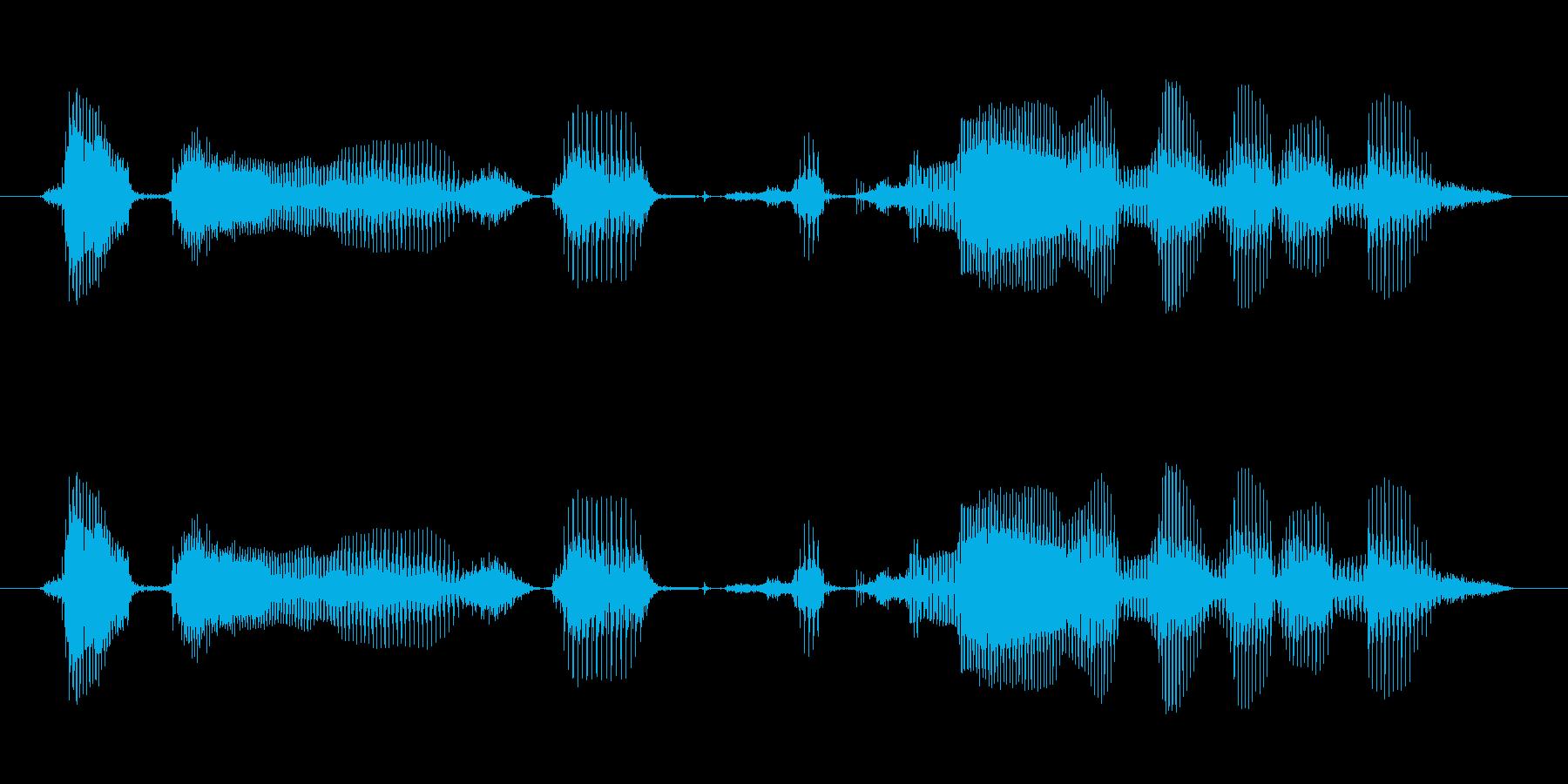 ボタンを押すと説明が流れますの再生済みの波形