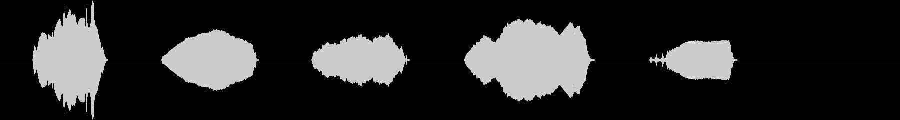 ラマコール。 2つのラマ、複数のコ...の未再生の波形