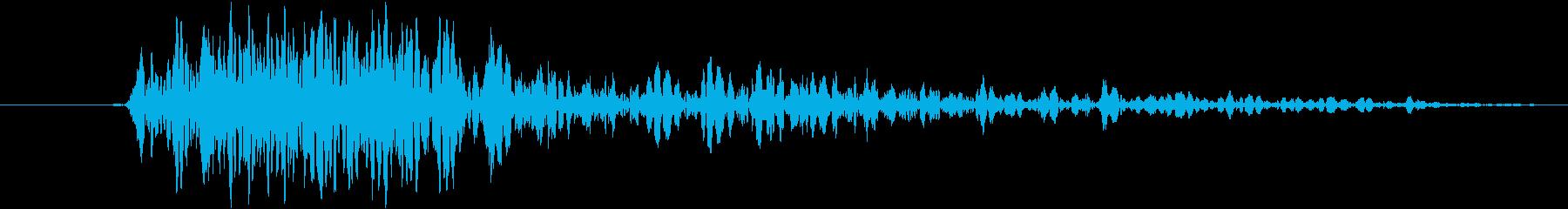 大人の雌ライオン:猛烈なSn音、野...の再生済みの波形