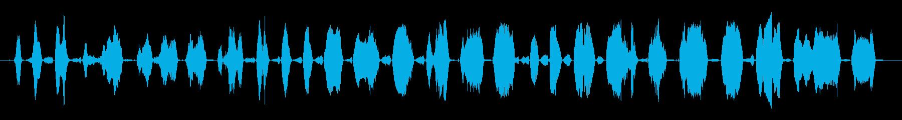 成人女性:苦労するうなり声の再生済みの波形