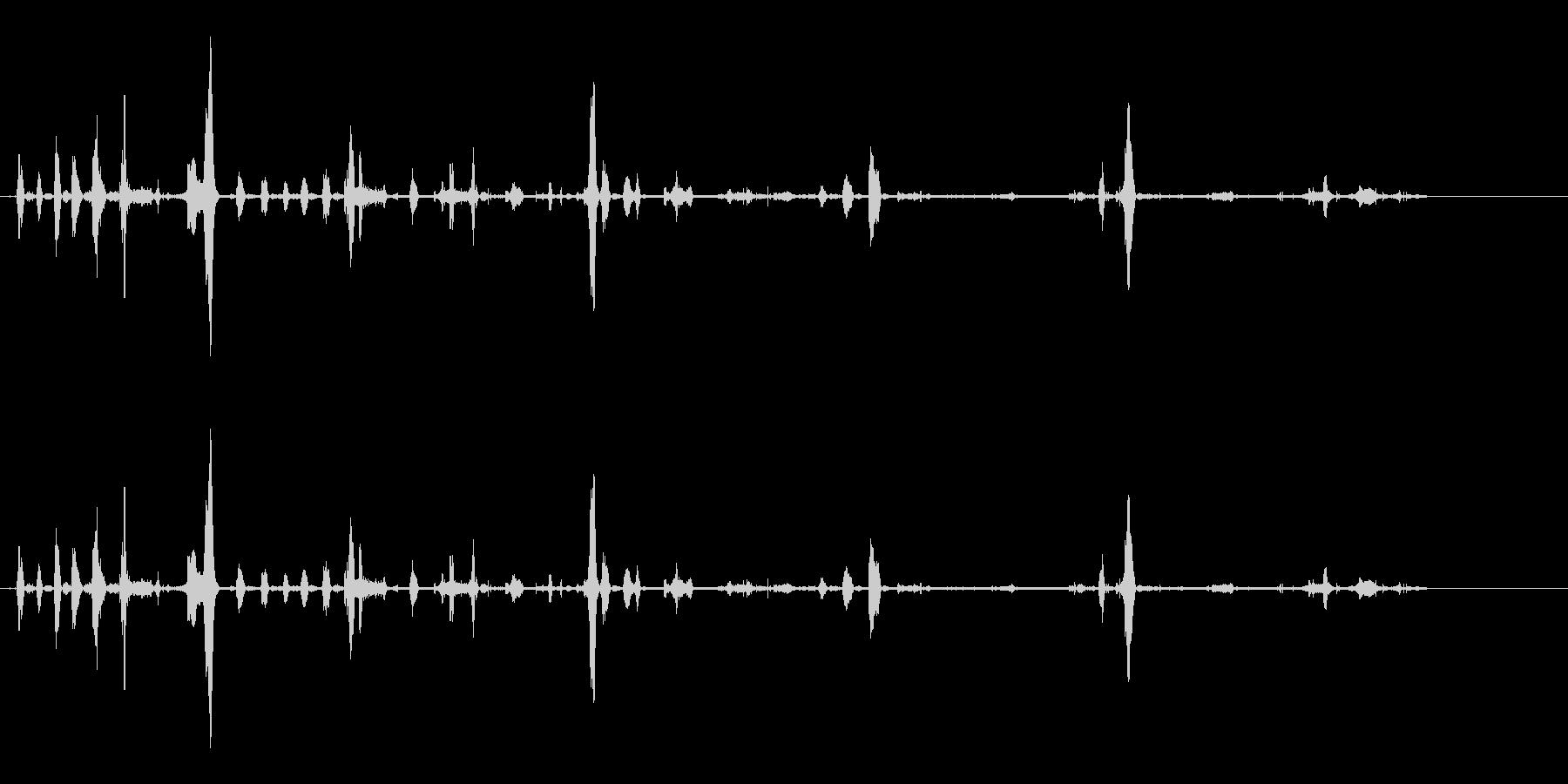 犬-シベリアンハスキー-あえぎ-の未再生の波形