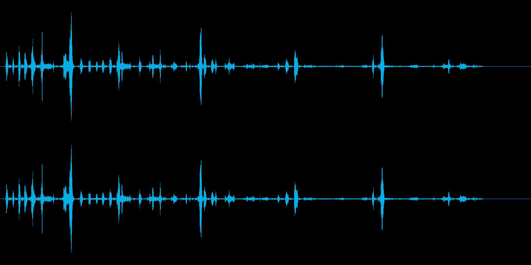 犬-シベリアンハスキー-あえぎ-の再生済みの波形