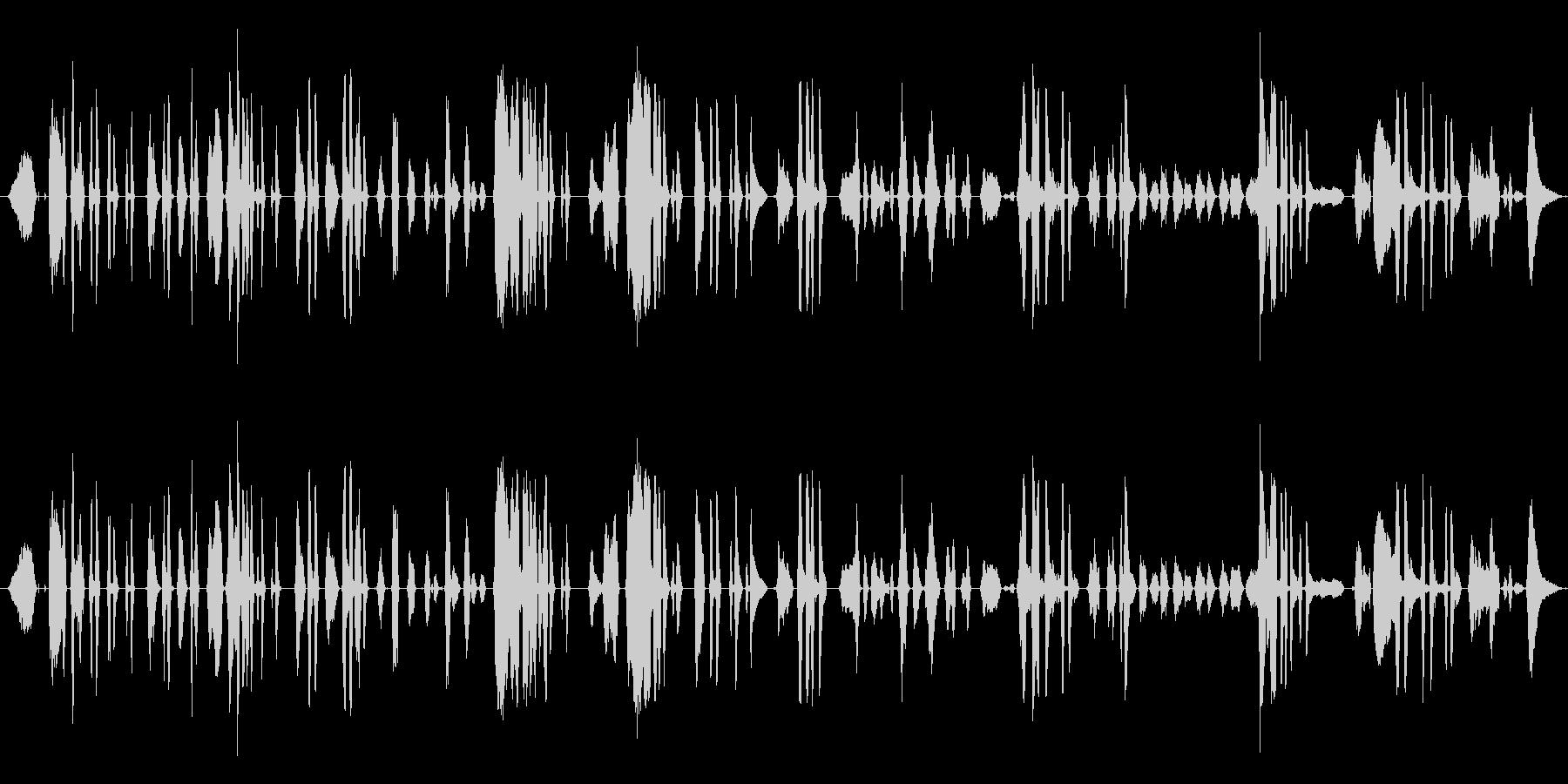 鳴き声 女性の泣き声シーケンス01の未再生の波形