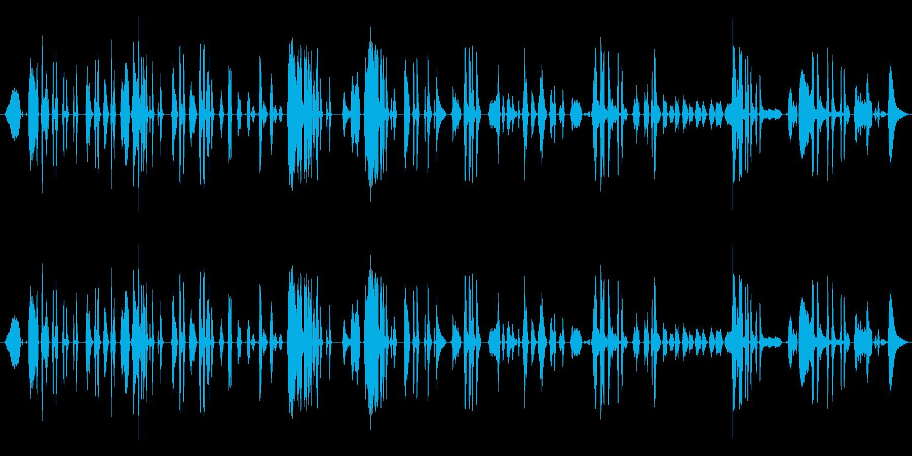 鳴き声 女性の泣き声シーケンス01の再生済みの波形