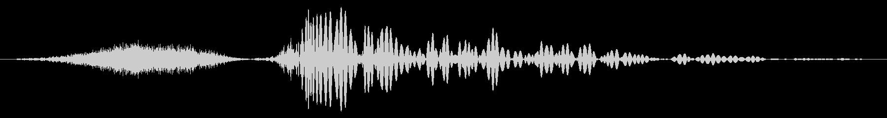 北極の蝶、フィズサブヒット。 6チ...の未再生の波形