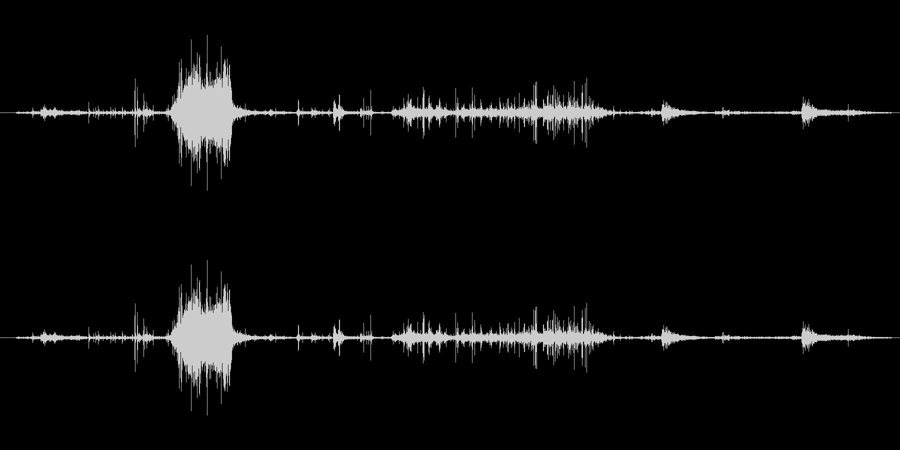 紙 リップアンドラッスル01の未再生の波形