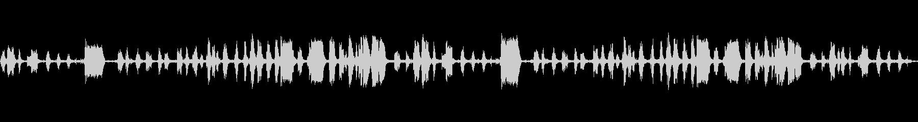 ブタのうなり声と鳴き声の未再生の波形
