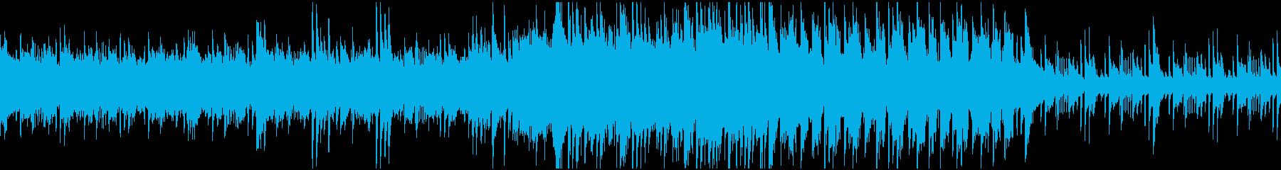ループ素材 湖 海 畔 の再生済みの波形
