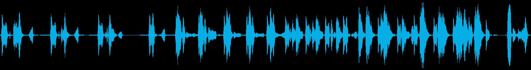 三輪車のスクイーズの再生済みの波形