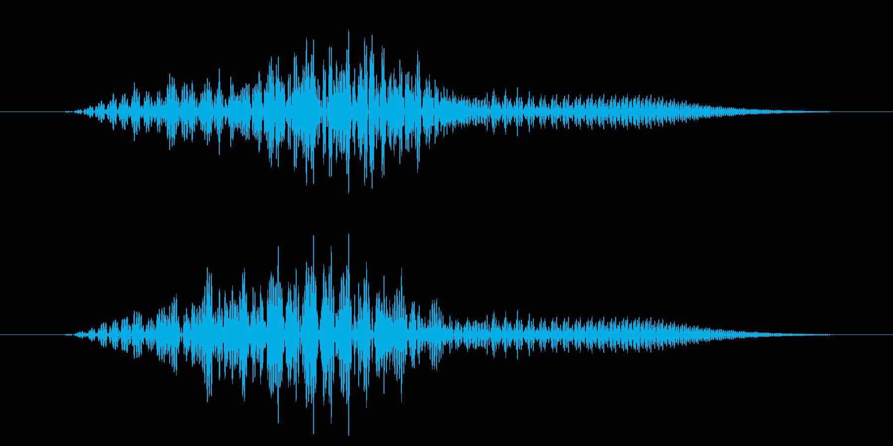 ピッという短いボタン音です。の再生済みの波形