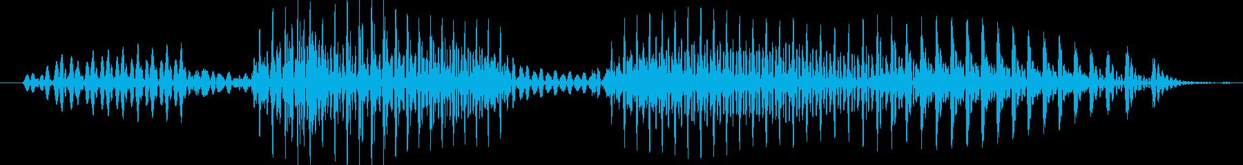 裏ドラの再生済みの波形