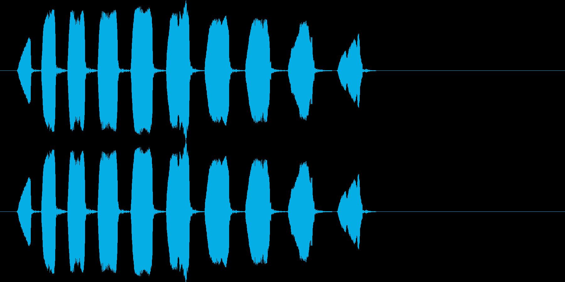 猿、鳴き声、ピープ。ハイピッチ、ラ...の再生済みの波形