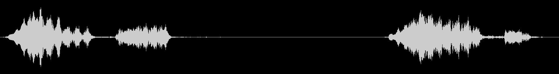 2つの孤立したウィニーの未再生の波形