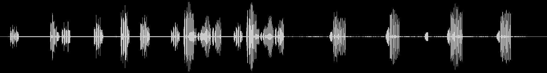 青シジュウカラの未再生の波形