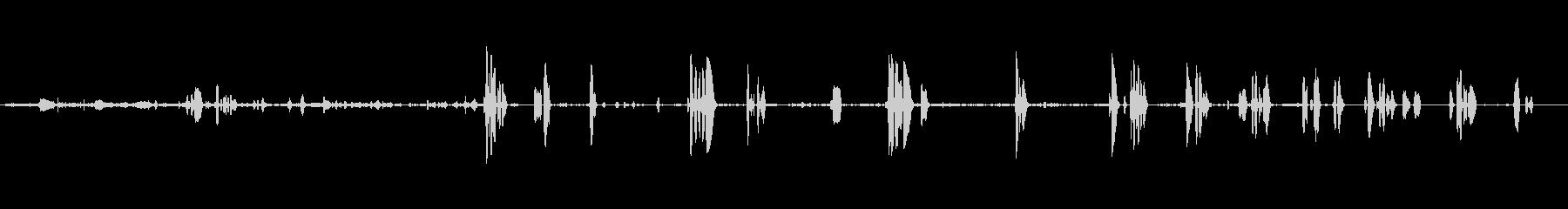 シェパードコールアンドホイッスル、...の未再生の波形