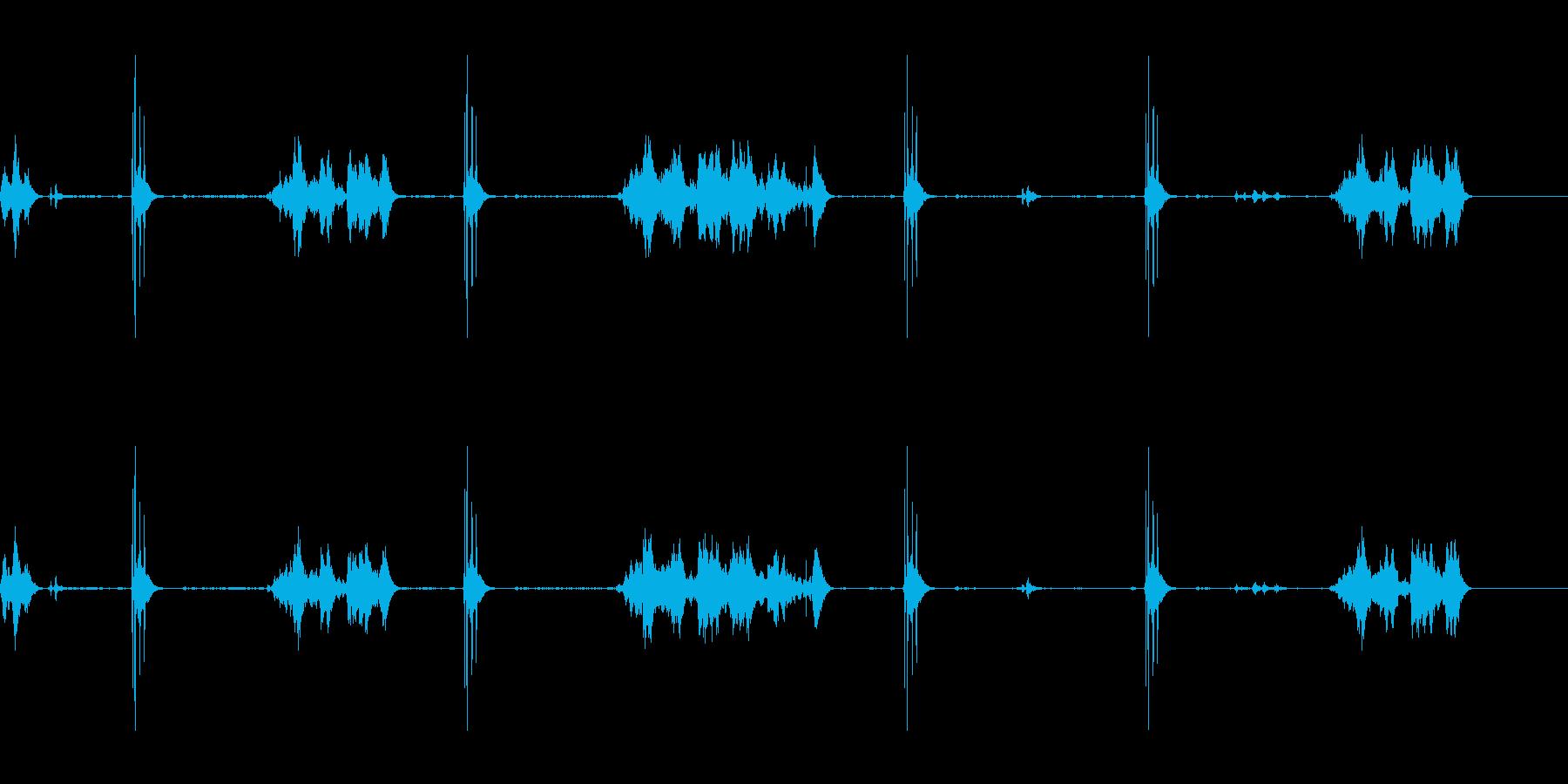 早朝の鳥が鳴いているの再生済みの波形
