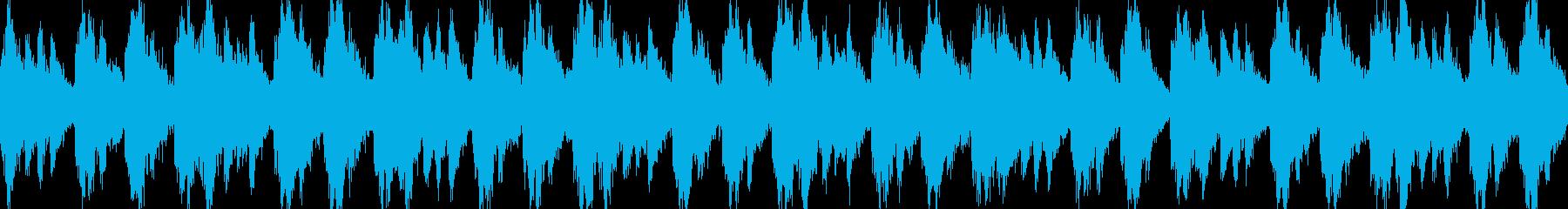 和風 巡礼 野山を足早にの再生済みの波形