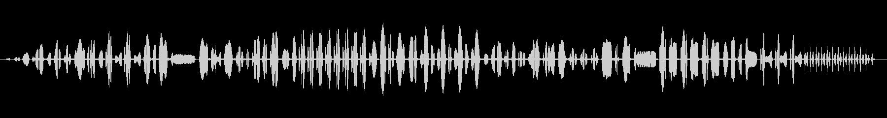 冬のレン:定数呼び出し、動物の鳥の未再生の波形