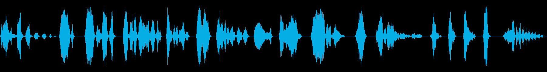男性:男性だけの人間の声;叫び声と叫び声の再生済みの波形