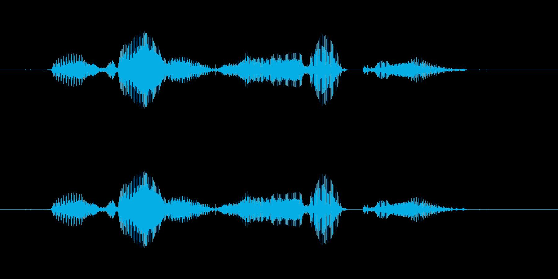 【西暦】2016年の再生済みの波形