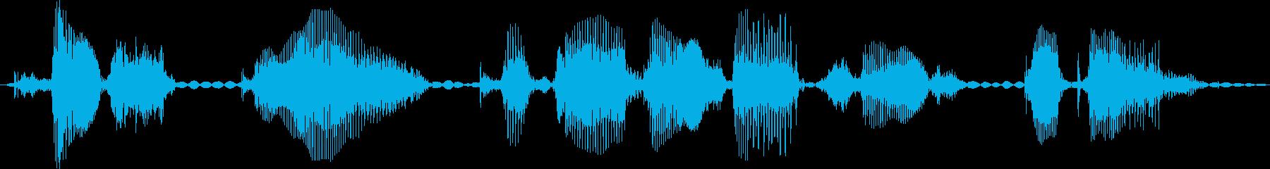 コンピューターまたは電話の応答3を...の再生済みの波形