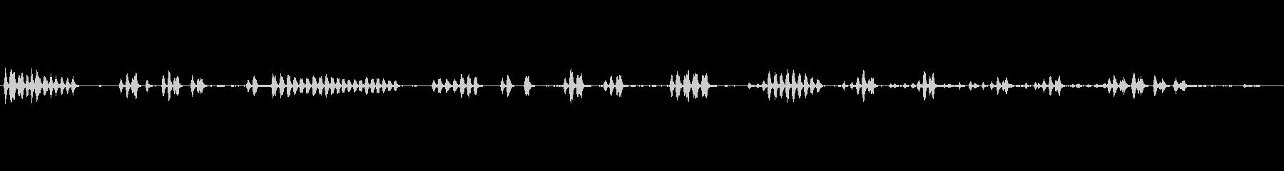 ヒヨドリ5 ソロ 使い易い~早朝生録音の未再生の波形