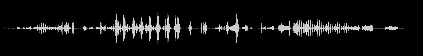 かもめの未再生の波形