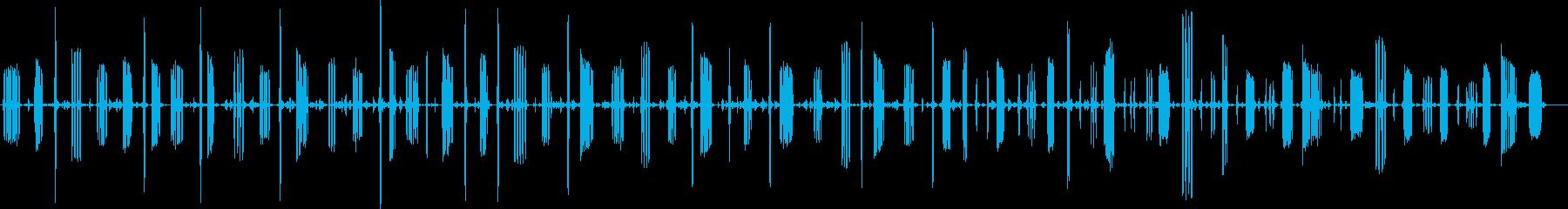 チャット、イエローブレストチャープ...の再生済みの波形