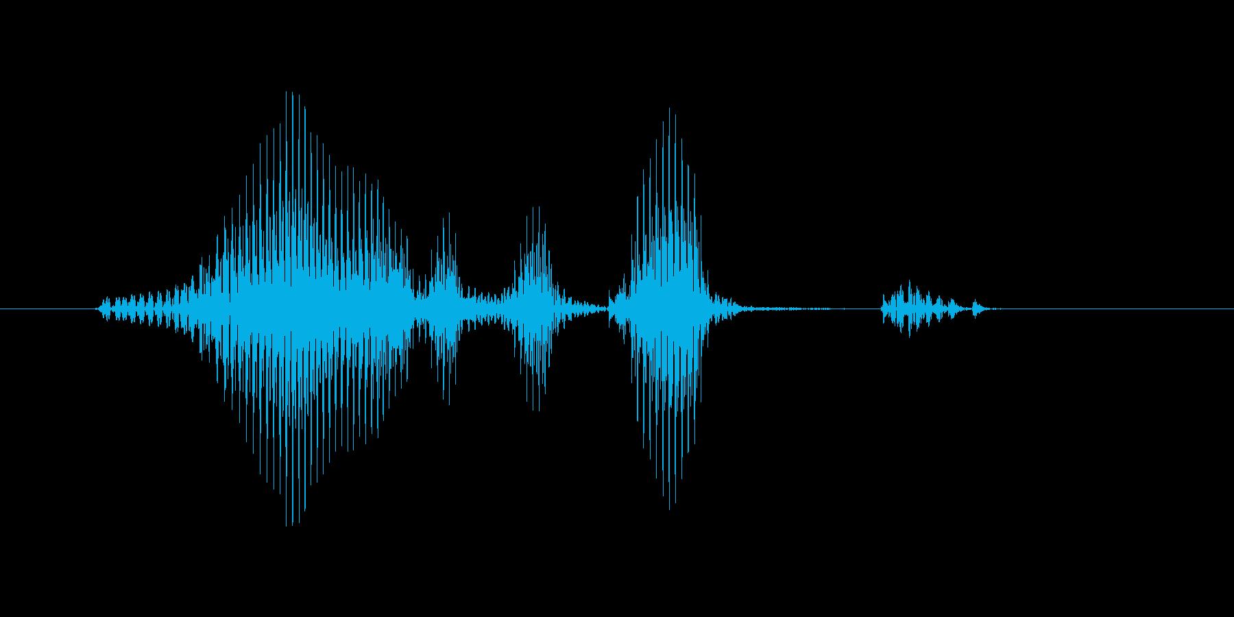 ワールドカップの再生済みの波形
