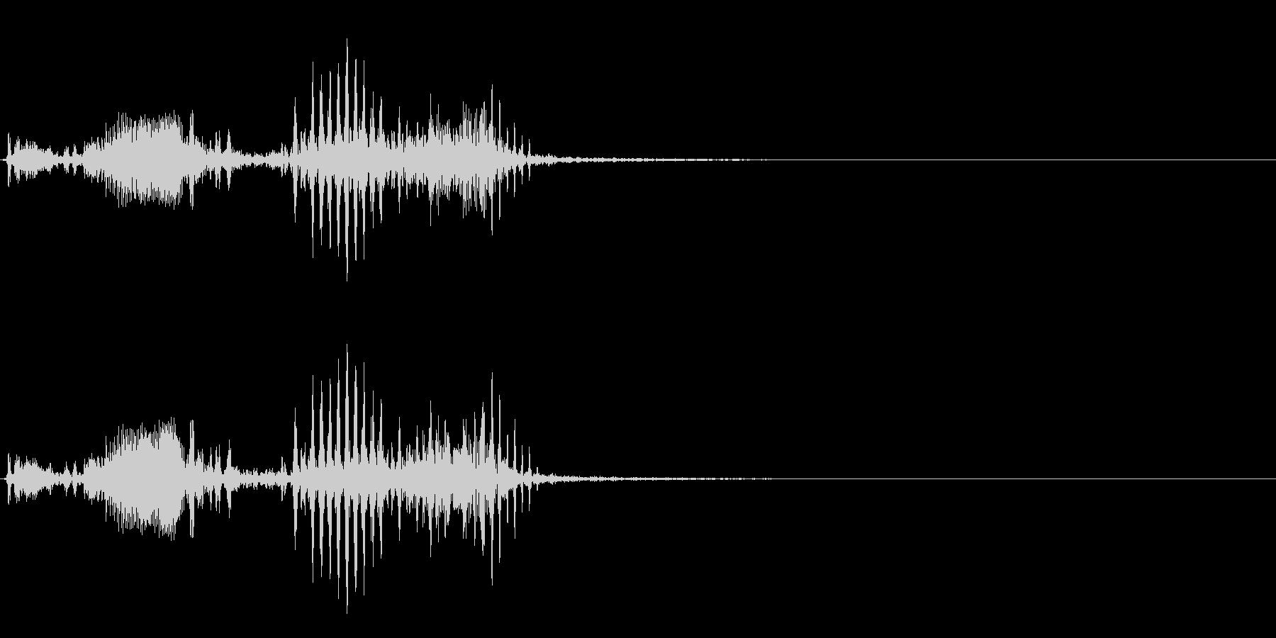 【生録音】フラミンゴの鳴き声 20の未再生の波形