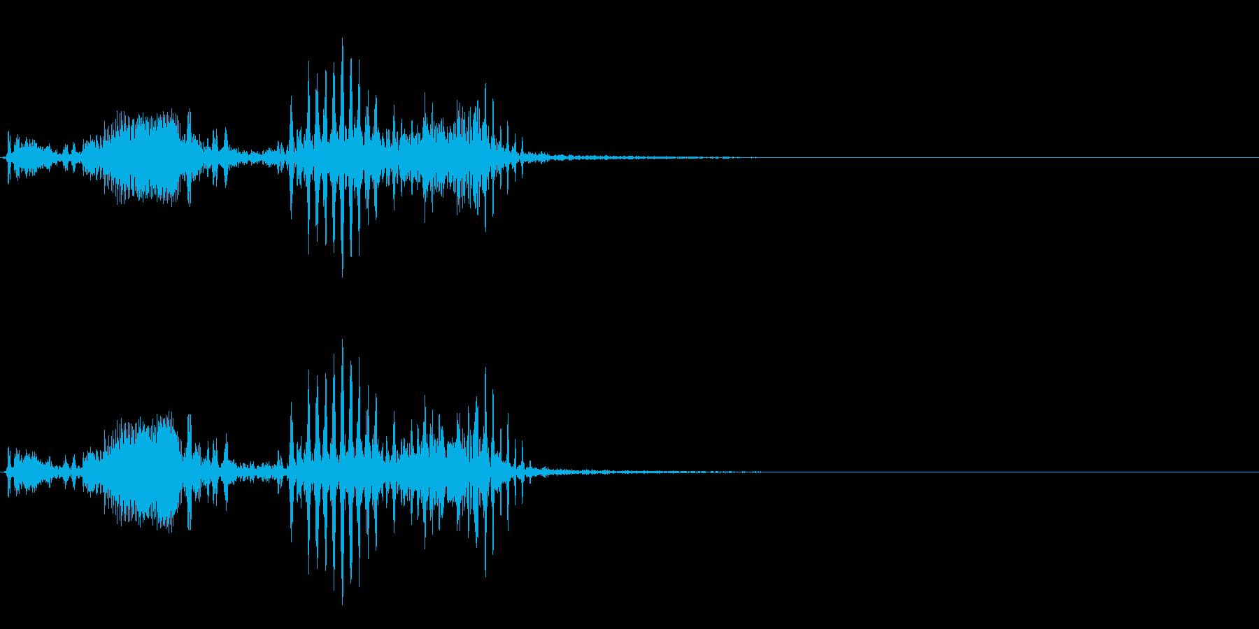 【生録音】フラミンゴの鳴き声 20の再生済みの波形