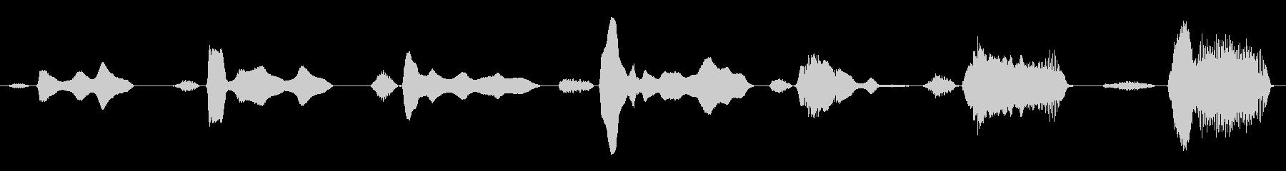 成人男性:怖い神経Ne音の未再生の波形