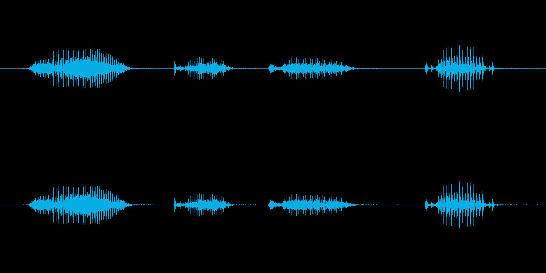 【日数・経過】6日経過の再生済みの波形