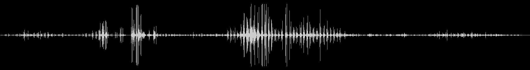 ギャロップ馬の未再生の波形