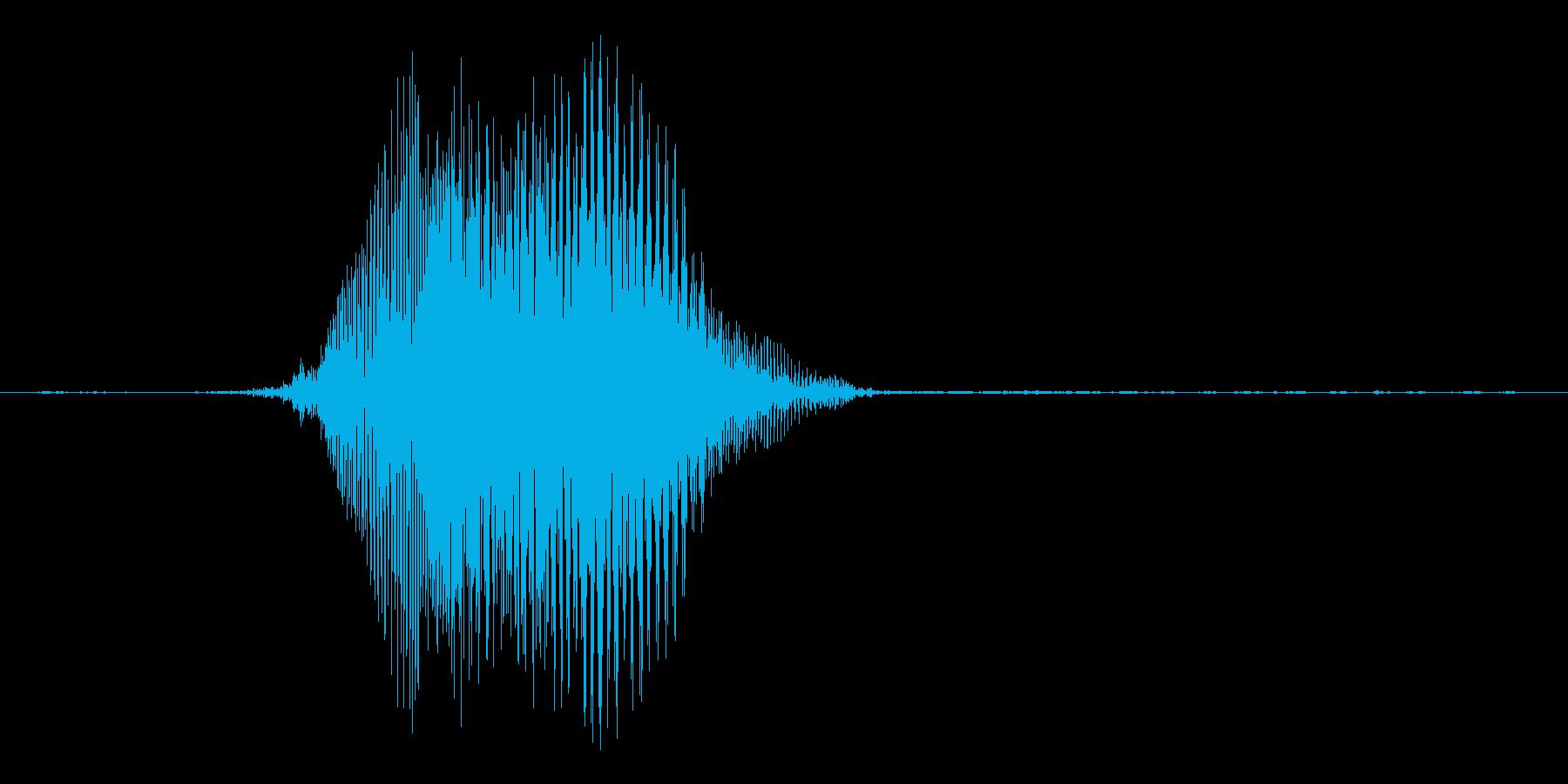 ふんっ!の再生済みの波形