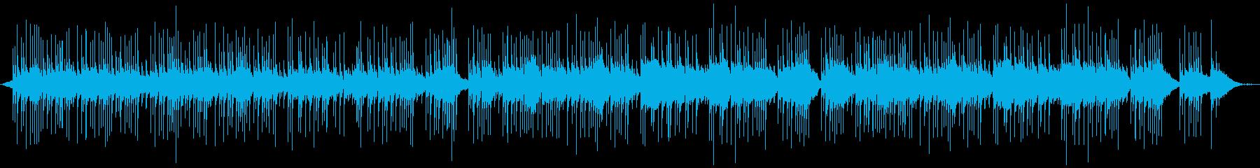 Sanshin tone reminiscent of the calm Okinawan sea's reproduced waveform