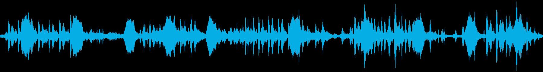 【環境音ループ仕様】朝の鳥の鳴き声01の再生済みの波形