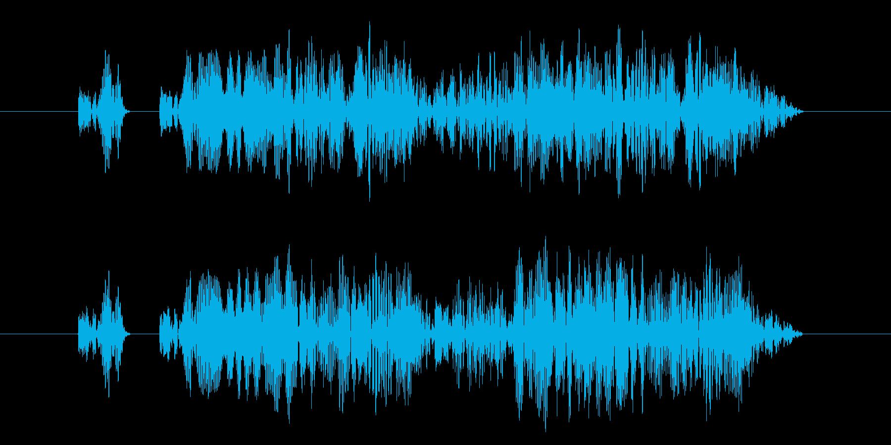 「プニ!ピピ!」可愛い決定、タッチ11!の再生済みの波形