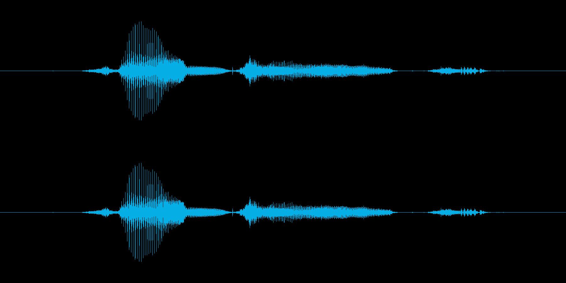 【日】30日の再生済みの波形