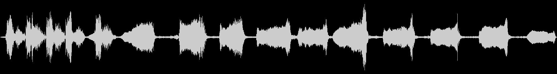 インコラル、チェーンムーブメント、...の未再生の波形