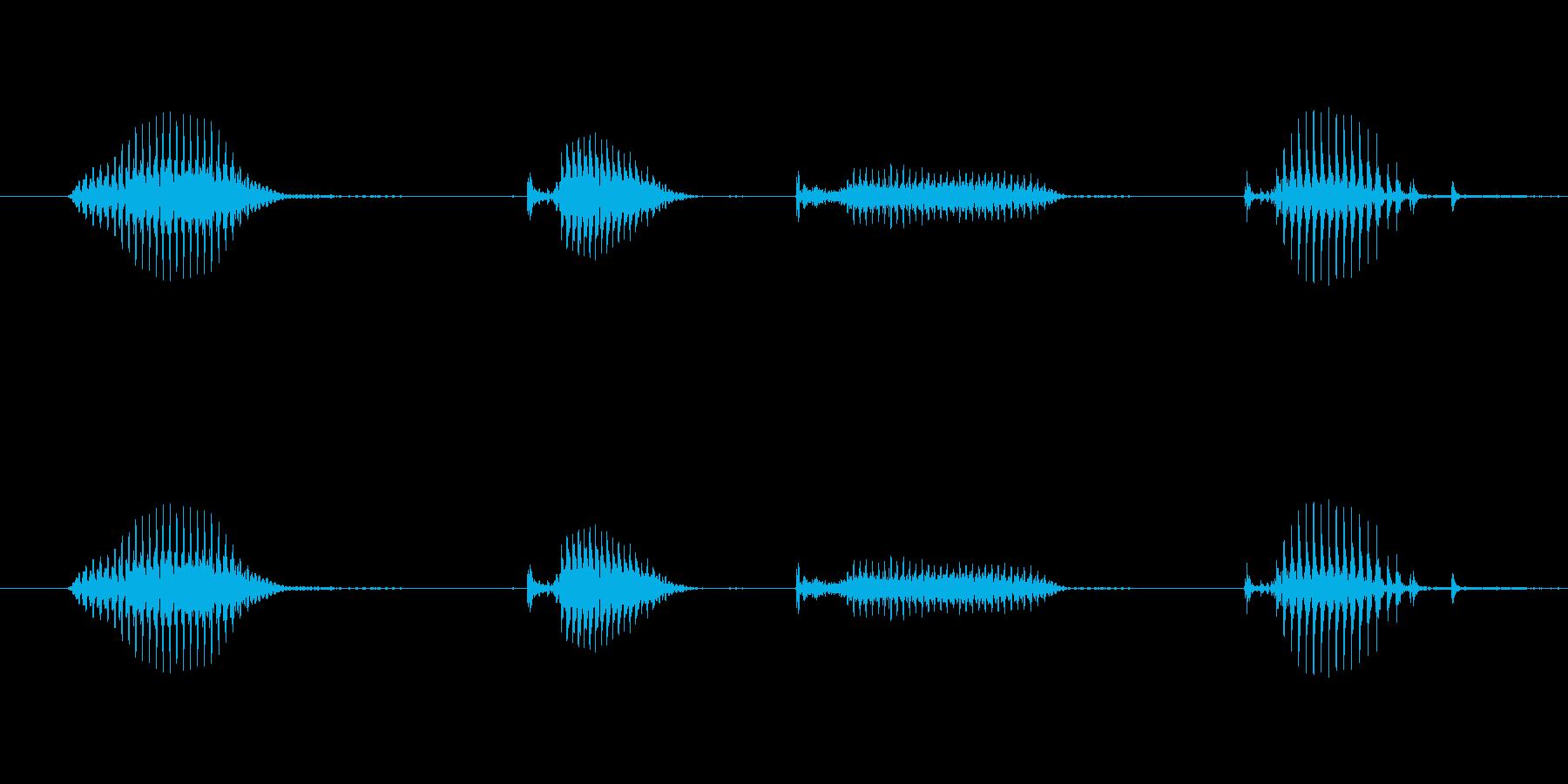 【日数・経過】3日経過の再生済みの波形