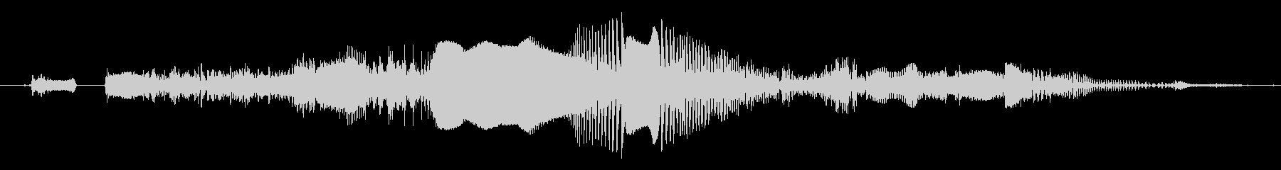 鳴き声 雄のうなり声の未再生の波形