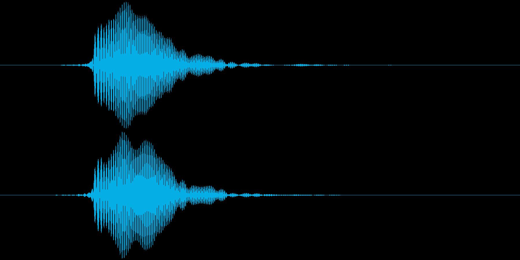 パッ (やや低め)テロップ音など の再生済みの波形