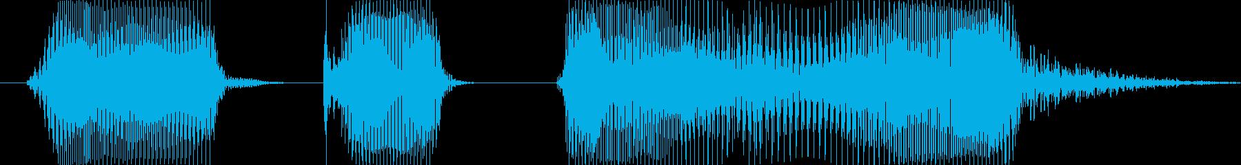 わかりました!の再生済みの波形