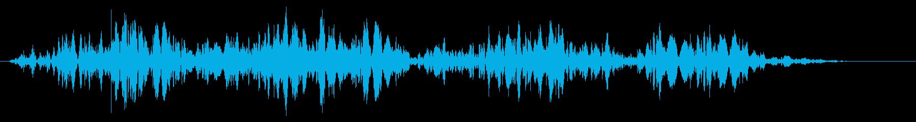 スライムなどが蠢く音タイプC#1の再生済みの波形